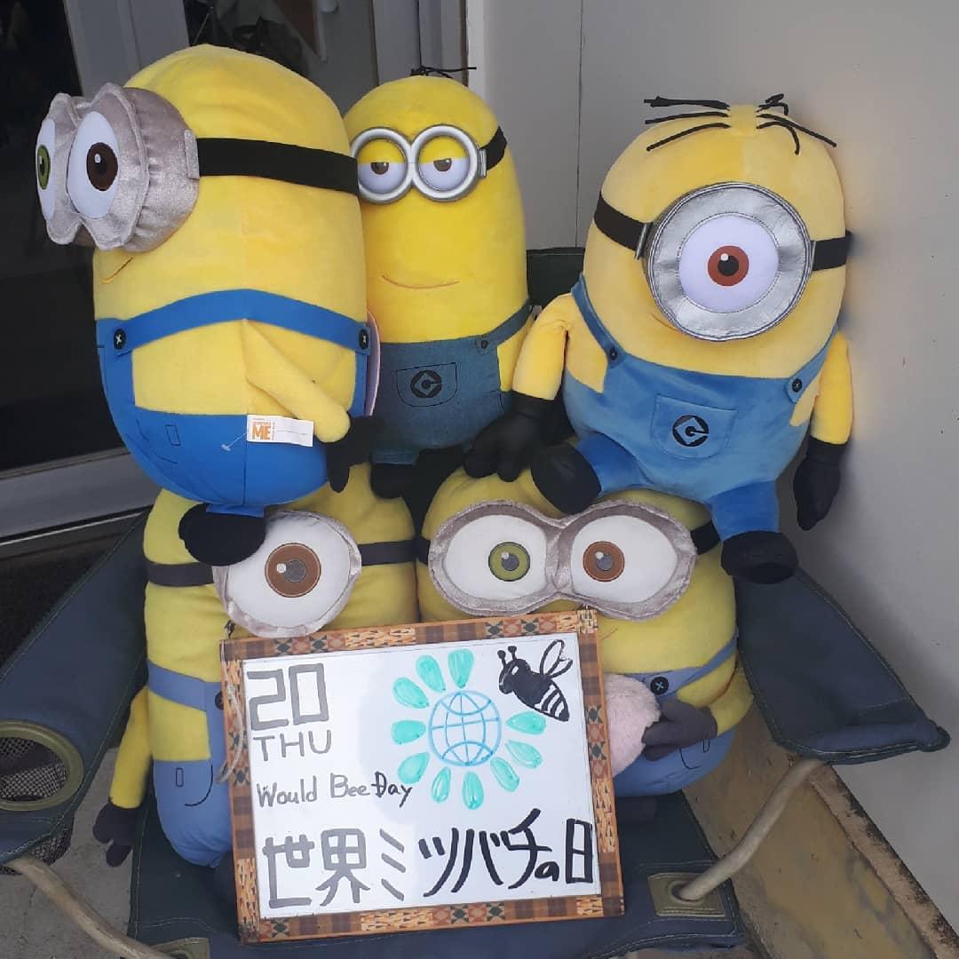 世界ミツバチの日(2021/05/20)Would Bee Day通常授業、オンライン授業実施中️全国統一小学生テスト満員御礼